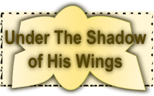 Under The Shadow Of God's Wings